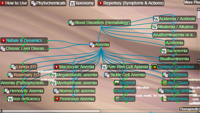 blood disorders, anemias