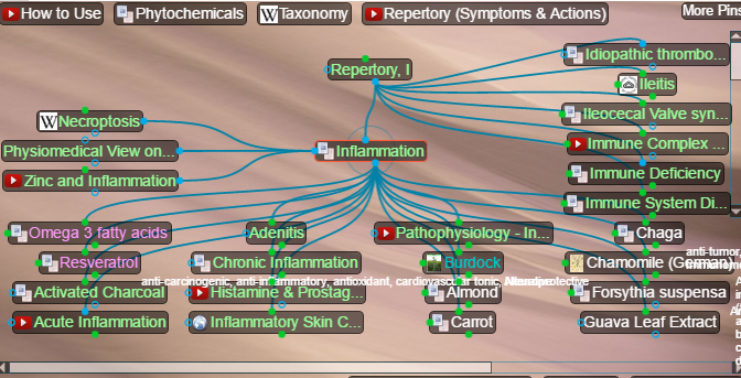 inflammation pathophysiology