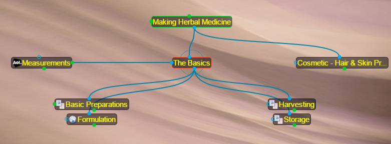 Opening view of The Basics in Making Herbal Medicine